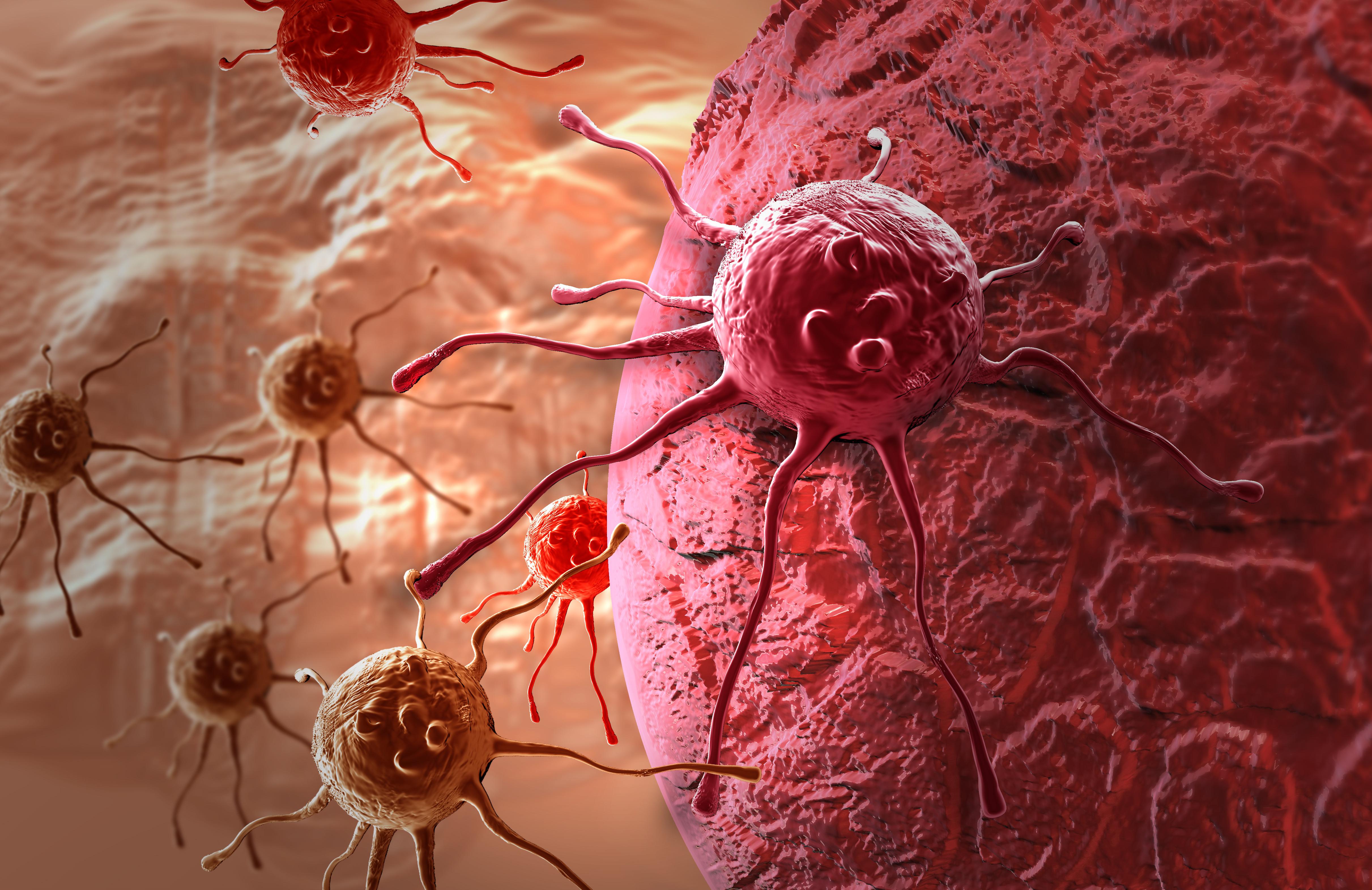 раковые клетки картинки частное