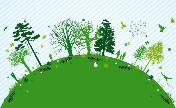 Студенты и аспиранты ТПУ получили стипендии имени Вернадского за исследования в области экологии