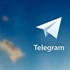 Политехник разработал первый в Томске чат-бот Telegram для службы доставки еды
