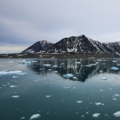 Молекулярное моделирование в ТПУ поможет России освоить Арктику