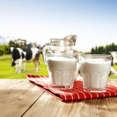 Электрохимики ТПУ разработали экспресс-методику определения органического яда в молоке