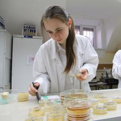 Физику и химию будут преподавать специалисты ТПУ для первого инженерного класса Томского гуманитарного лицея
